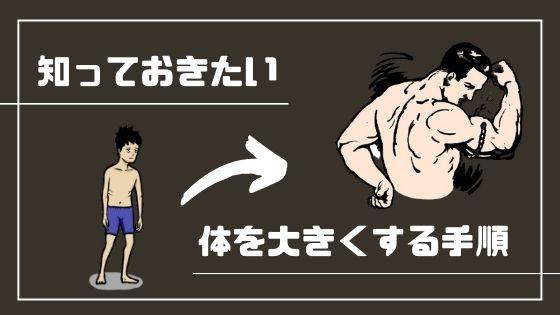 ガリガリ体形が体を大きくする手順【最速で大きくなる】|ガリガリを卒業する太る為の方法
